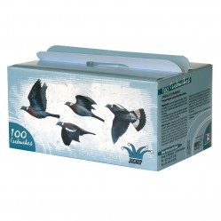 Pack super grand passage pigeon x 100